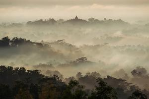 Colorful Sunrise over Borobudur Temple in Misty Jungle Forest, Indoneisa by mazzzur