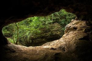 Green Trees View from the inside of the Cave by mazzzur