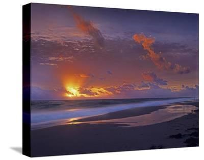 McArthur beach at sunrise, Florida-Tim Fitzharris-Stretched Canvas Print