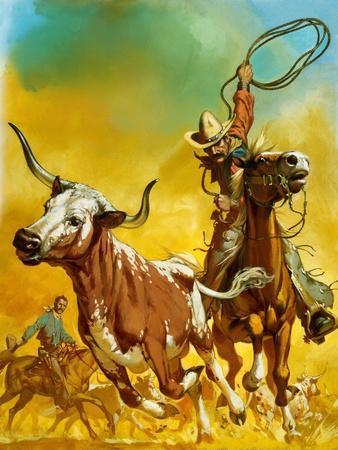 Cowboy Lassoing Cattle