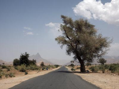 An Empty Road and the Barren Landscape of Western Eritrea, Africa by Mcconnell Andrew
