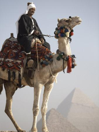 Bedouin Guide on Camel-Back Overlooking the Pyramids of Giza, Cairo, Egypt by Mcconnell Andrew