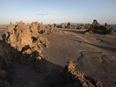 Desolate Landscape of Lac Abbe, Dotted with Limestone Chimneys, Djibouti, Africa by Mcconnell Andrew
