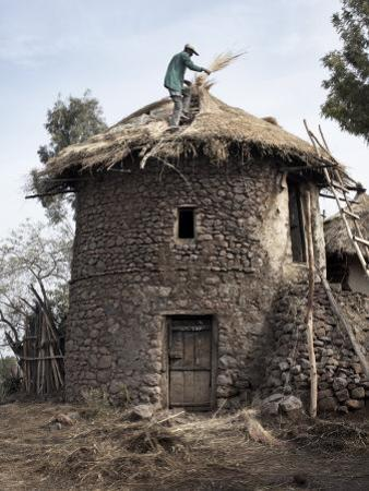 Man Thatches the Roof of His House in the Town of Lalibela, Ethiopia, Africa by Mcconnell Andrew