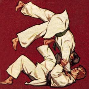 Judo by McConnell