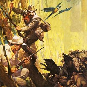 The President Who Loved Adventure: Theodore Roosevelt by McConnell