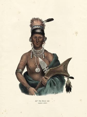 Saukie Chief