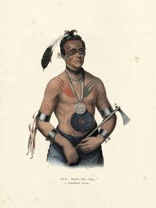 A Winnebago Chief by McKenny & Hall