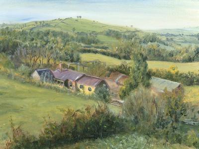 https://imgc.artprintimages.com/img/print/meadow-farm-cottage-1999_u-l-pjduew0.jpg?p=0