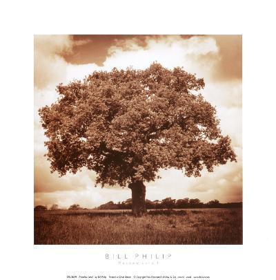 Meadow Land I-Bill Philip-Art Print