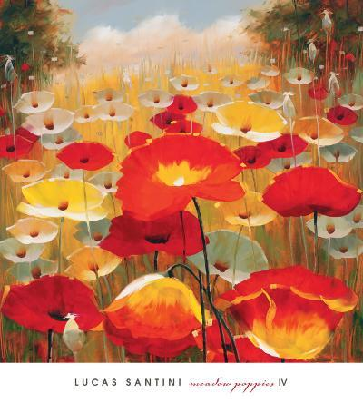 Meadow Poppies IV-Lucas Santini-Art Print