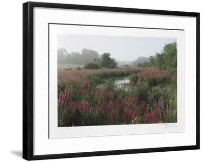Meadow-Harvey Edwards-Framed Collectable Print