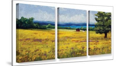 Lake Side Mustard Field, 3 Piece Gallery-Wrapped Canvas Set by Meaghan Troup