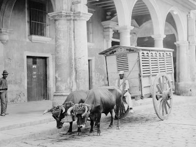 Meat Wagon, Havana, Cuba--Photo