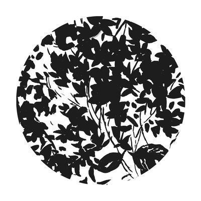 https://imgc.artprintimages.com/img/print/medallion-ii_u-l-q1b4wan0.jpg?p=0
