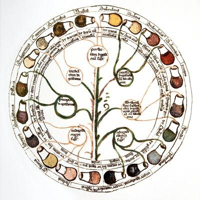 https://imgc.artprintimages.com/img/print/medieval-urine-wheel_u-l-pkx24f0.jpg?p=0