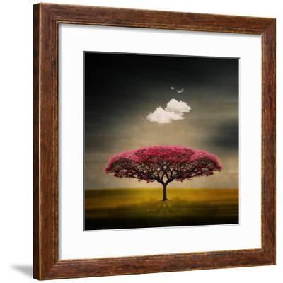 Medusa Cloud-Philippe Sainte-Laudy-Framed Photographic Print