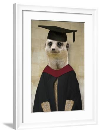 Meerkat in Mortar Board and Gown--Framed Photographic Print