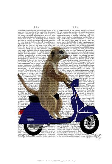Meerkat on Dark Blue Moped-Fab Funky-Art Print