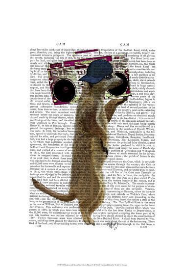Meerkat with Boom Box Ghetto Blaster-Fab Funky-Art Print