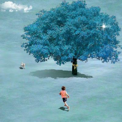 Meeting In Heaven-Nancy Tillman-Art Print