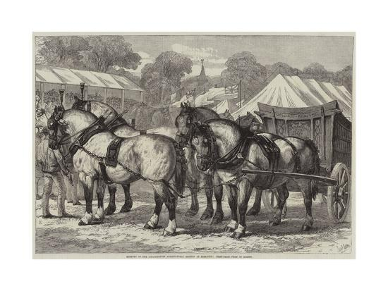 Meeting of the Lincolnshire Agricultural Society at Sleaford, First-Prize Team of Horses-Samuel John Carter-Giclee Print