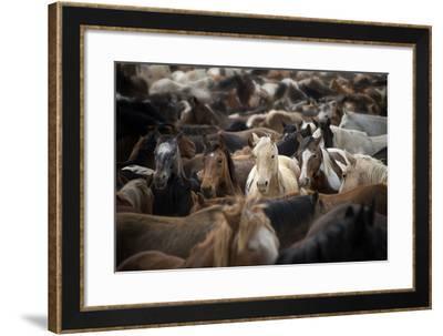 Meeting Place-PH Burchett-Framed Photographic Print