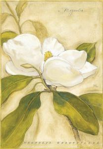 Magnolia by Meg Page