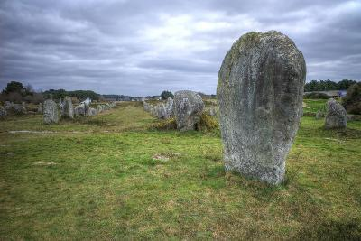 Megalithic Stones in the Menec Alignment at Carnac, Brittany, France, Europe-Rob Cousins-Photographic Print