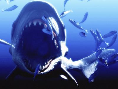 Megalodon Prehistoric Shark-Christian Darkin-Photographic Print