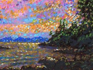 Alaskan Coast by Megan Aroon Duncanson