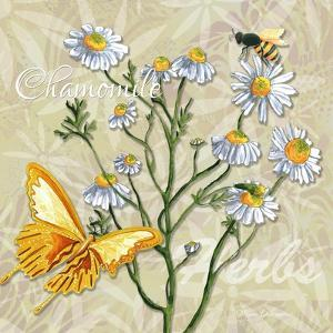 Sophisticated Elegant Herbs Spices Chamomile Daisy by Megan Aroon Duncanson