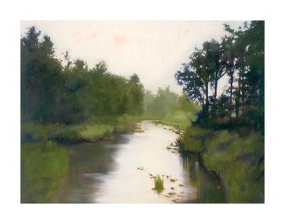 Foothills Stream