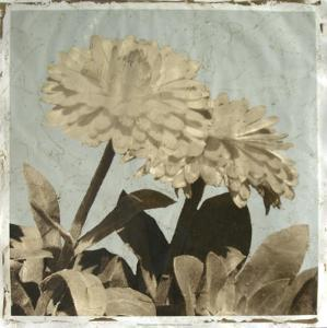 Antiqued Floral and Sky II by Megan Meagher