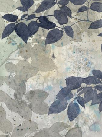 Aquarelle Shadows II by Megan Meagher