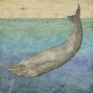 Diving Whale I by Megan Meagher