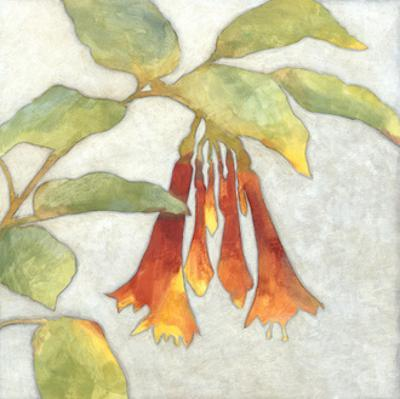 Fuchsia Blooms I by Megan Meagher