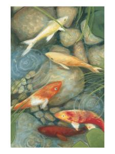 Reflecting Koi I by Megan Meagher