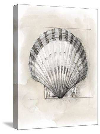 Shell Schematic III by Megan Meagher