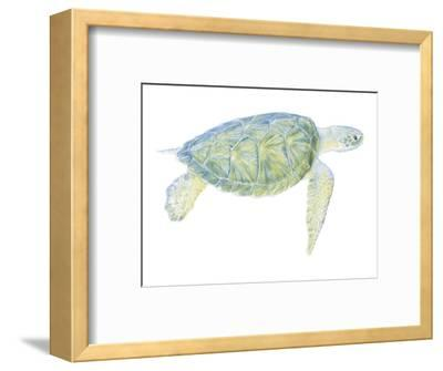 Tranquil Sea Turtle I