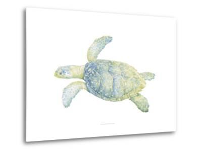 Tranquil Sea Turtle II