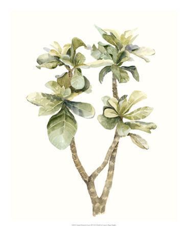 Tropical Watercolor Leaves III