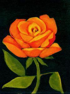 Orange Rose by Megan Moore