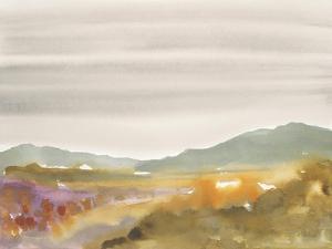 Mountain Haze by Megan Swartz