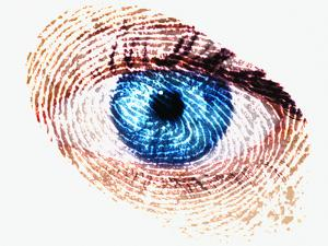 Biometric Identification by Mehau Kulyk
