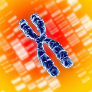 Chromosome by Mehau Kulyk