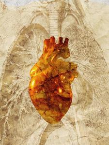 Diseased Heart by Mehau Kulyk