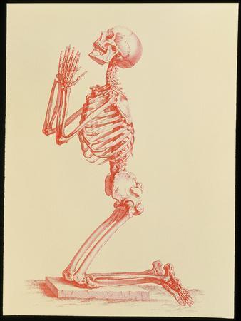 Engraving of Praying Male Skeleton by Cheselden