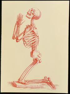 Engraving of Praying Male Skeleton by Cheselden by Mehau Kulyk