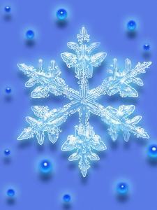 Snowflake by Mehau Kulyk